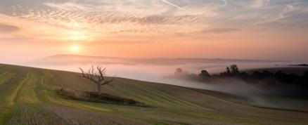 Bury Hill, W. Sussex8-2