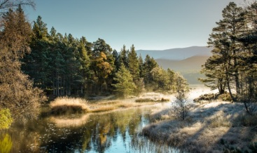 Loch Morlich, Cairngorms, Scotland