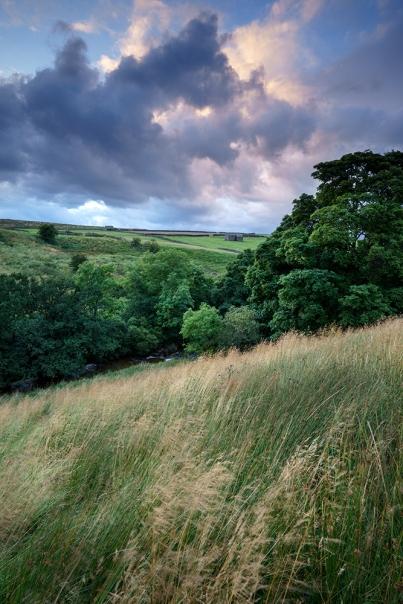 A favourite place, Sleddale