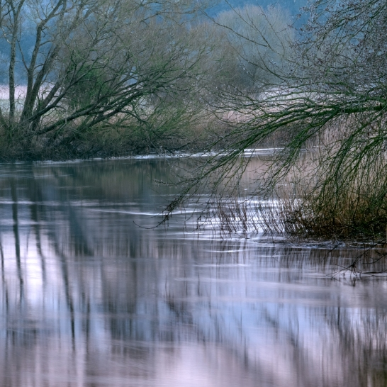 Arun Flow, South Stoke, West Sussex
